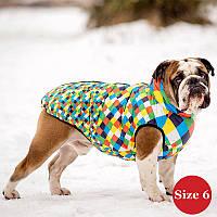 Жилет для собаки утеплений DIEGO sport 6/4 арлекін, розмір 6