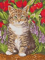 Картина по номерам ArtStory Кот в цветах 30*40см