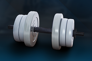 Гантель RN-Sport 11 кг Gray c ABS покриттям