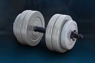 Гантель RN-Sport (Gray) - 13 кг c ABS покриттям