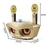 SDRD SD-306 Караоке система на два микрофона с колонкой - Розовый, фото 4