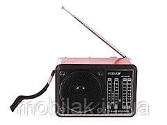Радіоприймач NK-203AC ТМ NEEKA