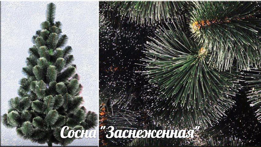 Искусственная Сосна Заснеженная 300 см Новогодняя Елка 3 метра sale
