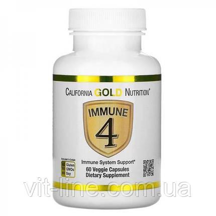 California Gold Nutrition, Immune4, засіб для зміцнення імунітету, 60 рослинних капсул, фото 2