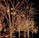 Уличная Гирлянда Нить Зеленый Провод 600 LED Лампочек Цвет в Ассортименте sale, фото 8