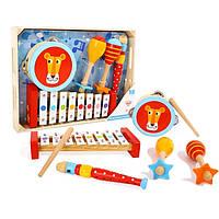 Деревянный набор музыкальных инструментов Tooky Toy львёнок, фото 1