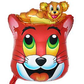 Кулька Кіт Тому