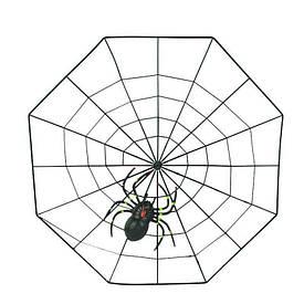 Декор Павутина з павуком (пластик)