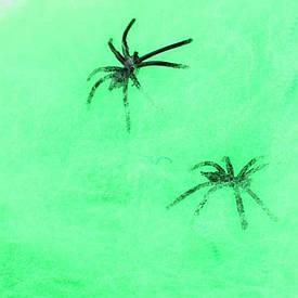 Павутина з павуками (20гр) зелена