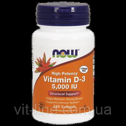 Now Foods вітамін D3 125 мкг (5000 МО), 240 м'яких таблеток, фото 2