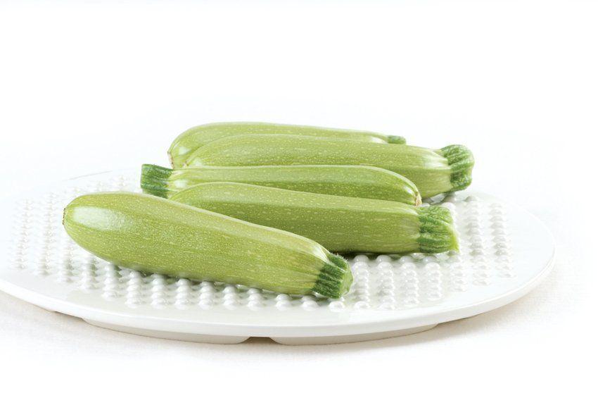 Корделия F1 семена кабачка, 5 семян — кабачок, ранний (45 дней) Syngenta