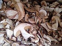 Сушеные карпатские грибы белые