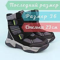 Термо ботинки серые для мальчика тм Том.м размер 36