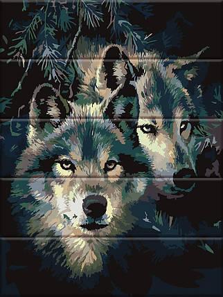 ASW092 Раскраска по номерам на деревянной основе Влюблённые волки, В картонной коробке, фото 2