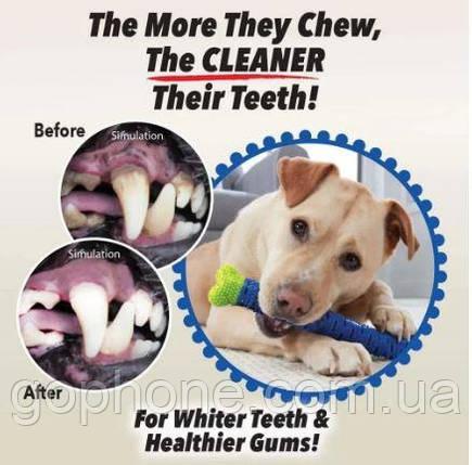 Самоочищающаяся зубная щетка для собак СhewBrush, фото 2