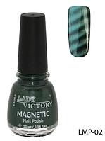 Лак для ногтей «Magnetic» Lady Victory LDV LMP-02 /94-0