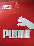 """Женские носки """"в стиле"""" """"Puma"""". Спорт. р. 36-40., фото 6"""