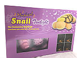 Черепаха-проектор Musical Snail Twilight, фото 4