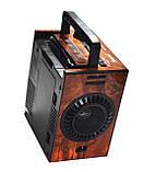 Радиоприемник Golon RX-9300, фото 3