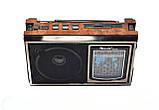 Радиоприемник RX-636 Golon, фото 2