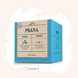 Для облегчения дыхания Prana Чайный напиток для укрепления здоровья дыхательной системы,в пирамидках по 2гр, фото 6