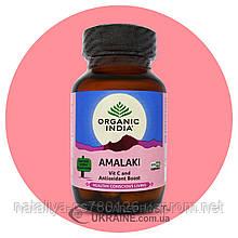 Амалаки (Амла) Органик Индия. Amalaki (Amla) Organic India, 60 капсул,
