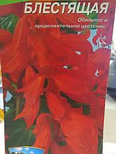 Насіння Сальвії блискучою ранньої червоної 5 грам 2000 насіння Україна