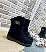 Ботинки женские зима классика замш, фото 4