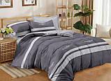 Полуторный комплект постельного белья из хлопка Полуторний комплект постільної білизни 1.5-спальный S449, фото 2