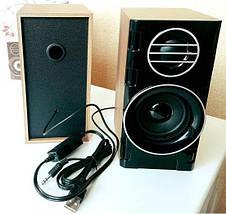 Компьютерные колонки FnT SW-2031 деревянные - акустические колонки для ПК, колонки для ноутбука, фото 3