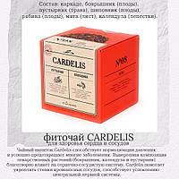 Cardelis Чайный напиток для укрепления здоровья сердца и сосудов, фиточай в пирамидках по 2 гр