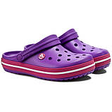 CROCS Crocband™ Clog Purple / Candy Pink, фото 3