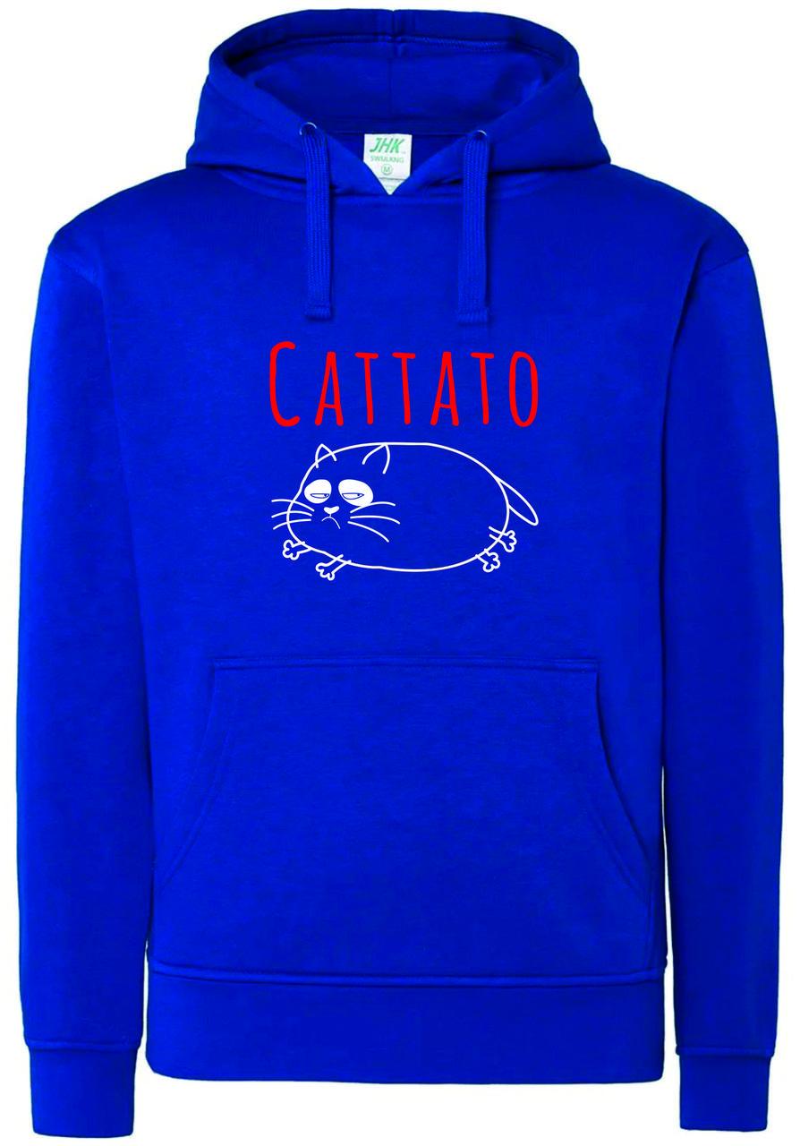 Реглан с капюшоном Cattato b