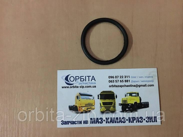 Кольцо уплотнительное фланца НШ-50 (Украина)