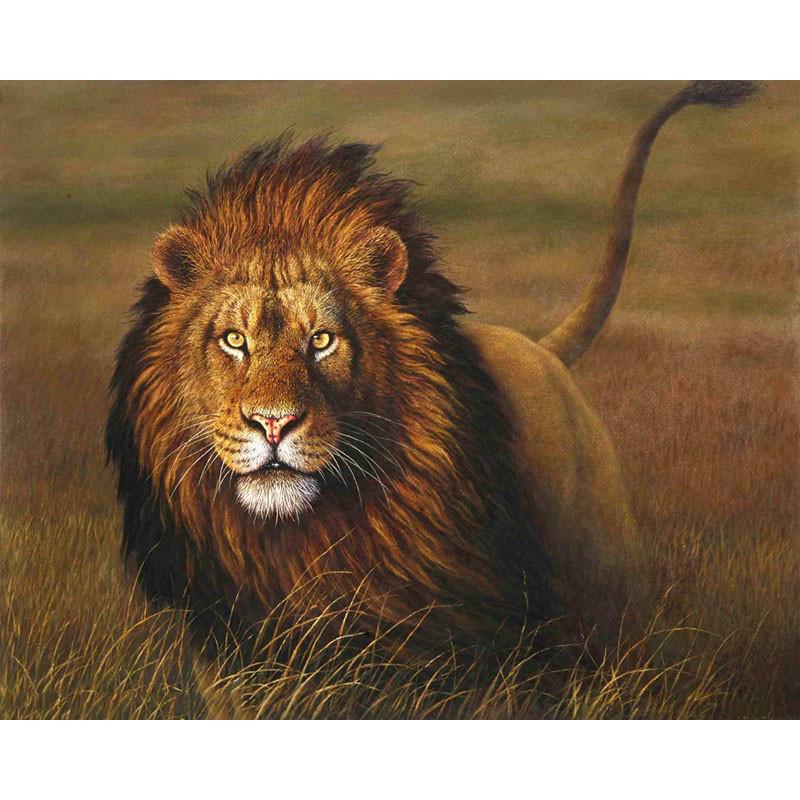 """Картина по номерам 40*50 см """"Царь зверей"""""""