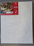 """Набор-стандарт, картина по номерам, """"Шедевры мирового искусства 8.52, 35х45см, ROSA START, фото 3"""