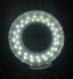 Лампа-лупа настільна з кріпленням T5-LED-S, фото 4