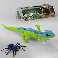 Ящерица ТТ 6014 А (48) на батарейках, с пауком, в коробке