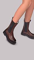 Женские ботинки коричневые, фото 2