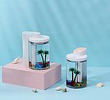 Увлажнитель воздуха и ночник (2в1) прозрачная чашка украшение Humidifier, фото 5
