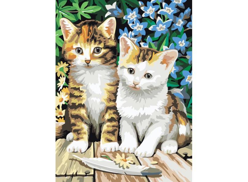 Картина по номерам Котята 40*50см, в коробке Dreamtoys код: DT-181
