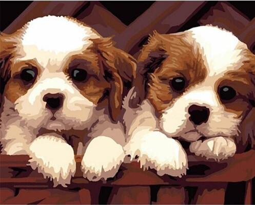 Картина по номерам Неразлучные друзья 40*50см, в коробке Dreamtoys код: DT-182