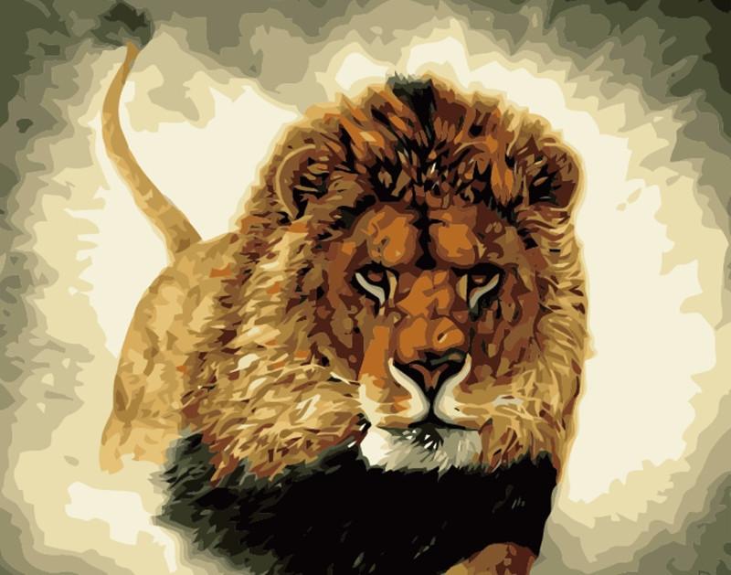 Картина по номерам Царь зверей 40*50см, в коробке Dreamtoys код: DT-311