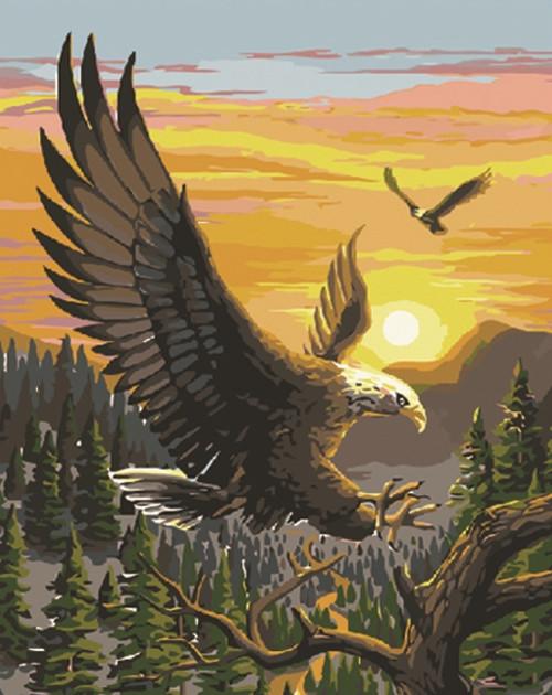 Картина по номерам Полёт орлана 40*50см, в коробке Dreamtoys код: DT-312