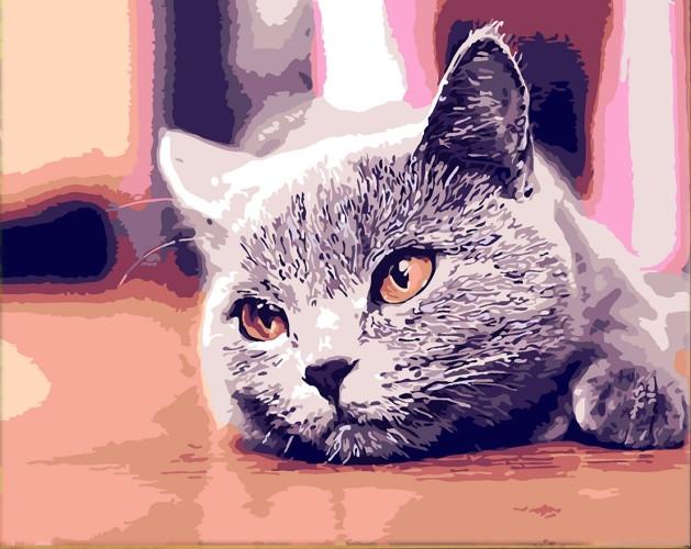 Картина по номерам Любимый питомец» 40*50см, в коробке Dreamtoys код: DT-753