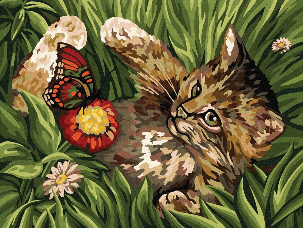 Картина по номерам №3 Котенок в траве» 30*40см, в кор. 42*32*3,5см Danko Toys код: KpN-03-03