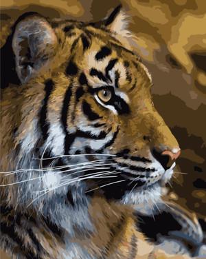 Картина по номерам Тигр, в термопакете 40*50см Стратег код: VA-0248