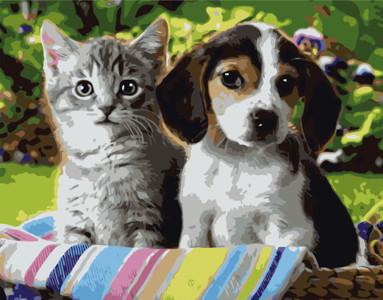 Картина за номерами Кошеня і цуценя, в термопакете 40*50см Стратег код: VA-0288