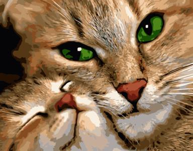 Картина по номерам Кошка с котенком, в термопакете 40*50см Стратег код: VA-0915