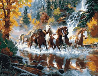 Картина по номерам Лошади мчат по воде в осеннем лесу, в термопакете 40*50см Стратег код: VA-1605